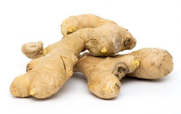 growing ginger for profit